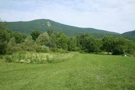 Mt. Greylock, as seen from Greylock Glen