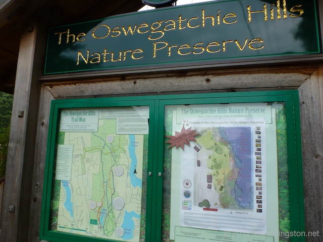 oswegatchie men Oswegatchie river archives craig joined a half-dozen men in late july in the lobby of the mill's mostly empty main headquarters for a the adirondack almanack.