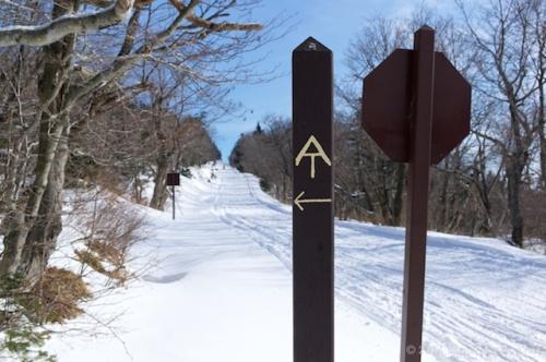 2014_Mt. Greylock Winter Hike 76