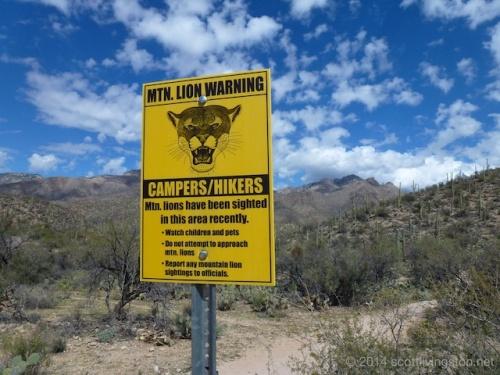 2014_March_Tucson Trip 50