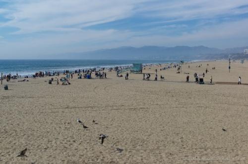 2014_Santa Monica & LA 9