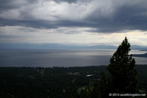 2014_Tahoe Rim Trail Enduranc Runs 1230
