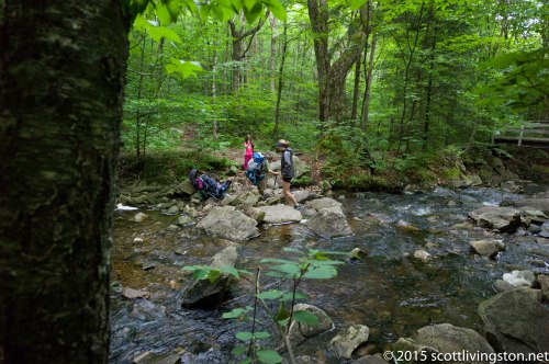 2015_Long Trail Anniversary Hike-5