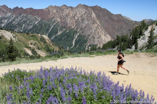 2015_Speedgoat Mountain Races-31
