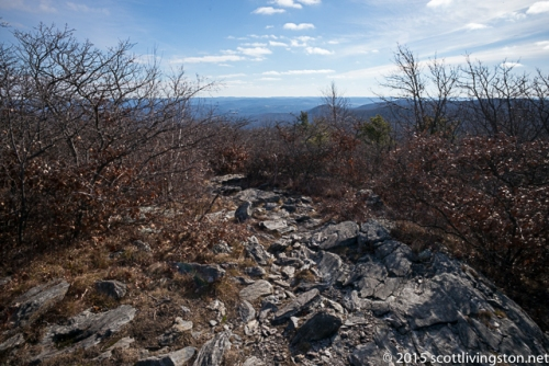 2015_Bear Mountain Hike-5