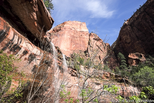 2015_Zion NP_01-3
