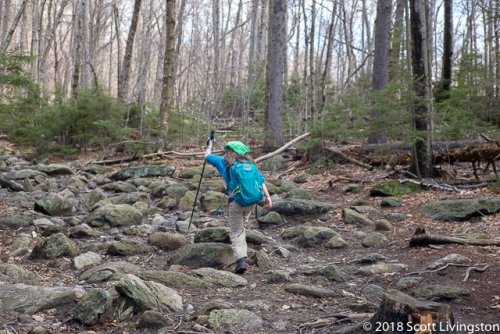 2018_Monadnock Hike-1