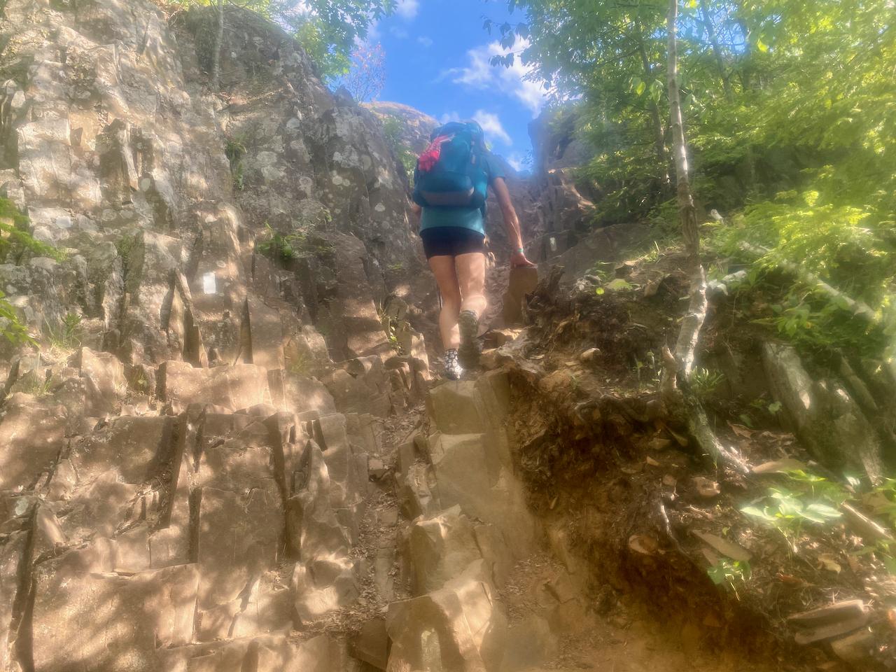 2020 NET Adventure (Blog) - 70 of 133