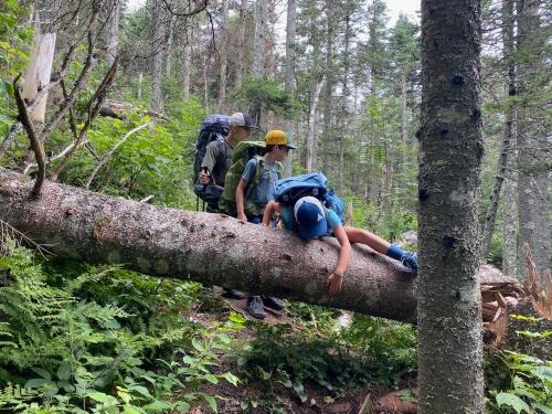 2020 Grafton Loop Trail Hike (Debbie) - 1 of 6