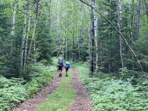 2020 Grafton Loop Trail Hike (Debbie) - 2 of 6